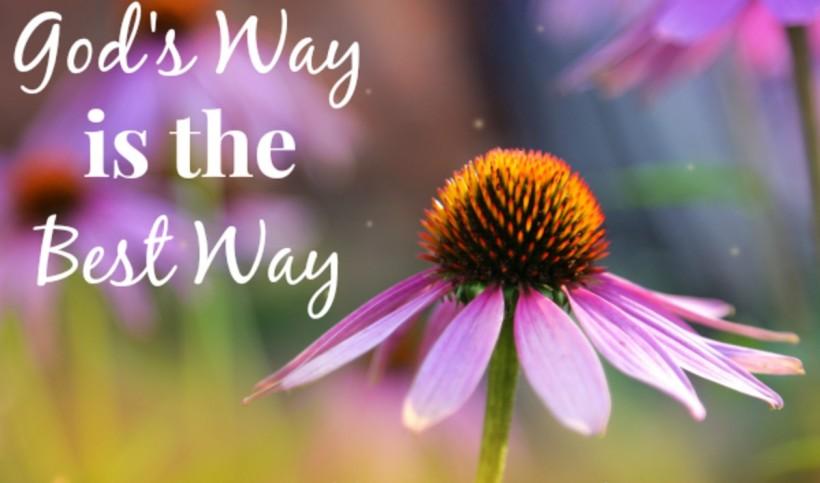 Gods-way-is-the-best